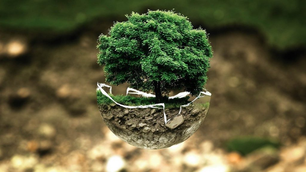 Eco friendly green lifestyle