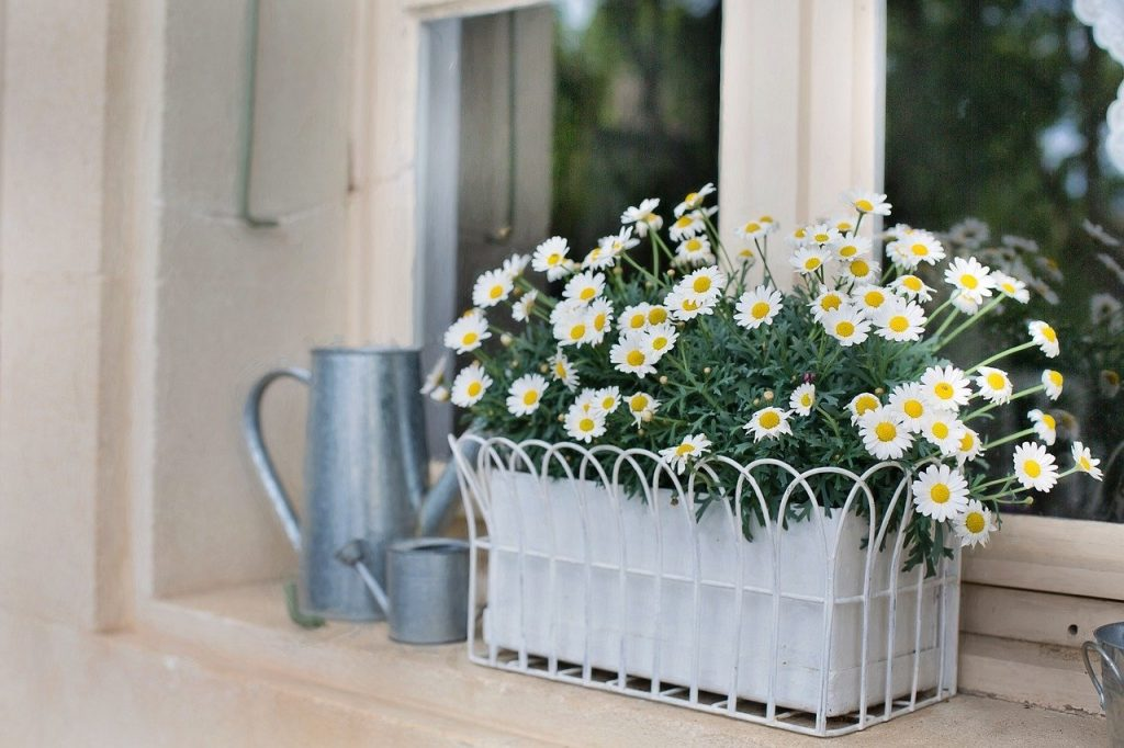 Flower planter box
